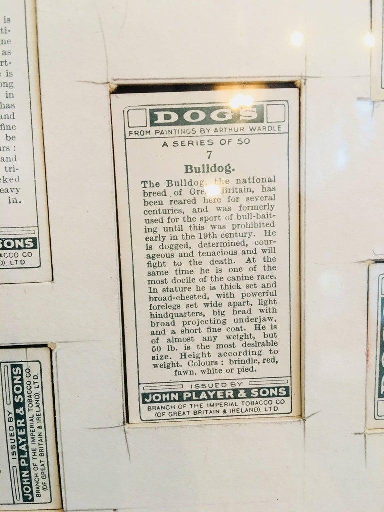 Arthur Wardle Framed Cigarette Cards 6