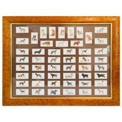 Arthur Wardle Framed Cigarette Cards