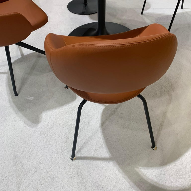 Extremely comfortable dining and meeting chair designed by René Holten. A model that acquired its name because its profile resembled that of the feared predator. However, you have nothing to fear from this shark. On the contrary. It's an extremely