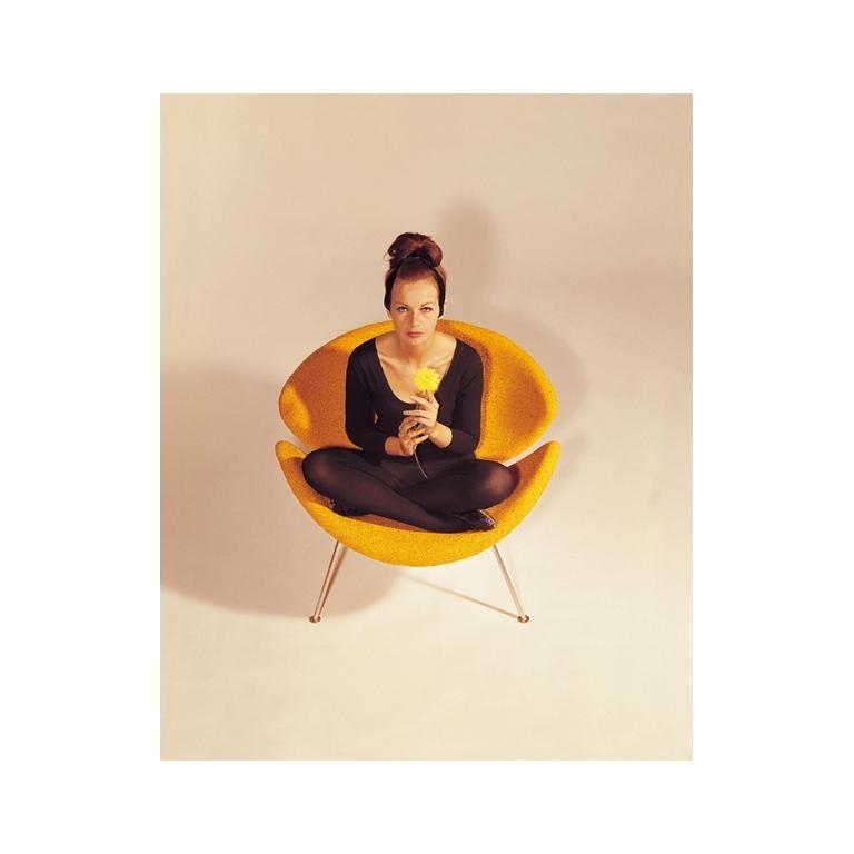 Artifort Orange Slice Armchair in Burnt Orange by Pierre Paulin For Sale 1