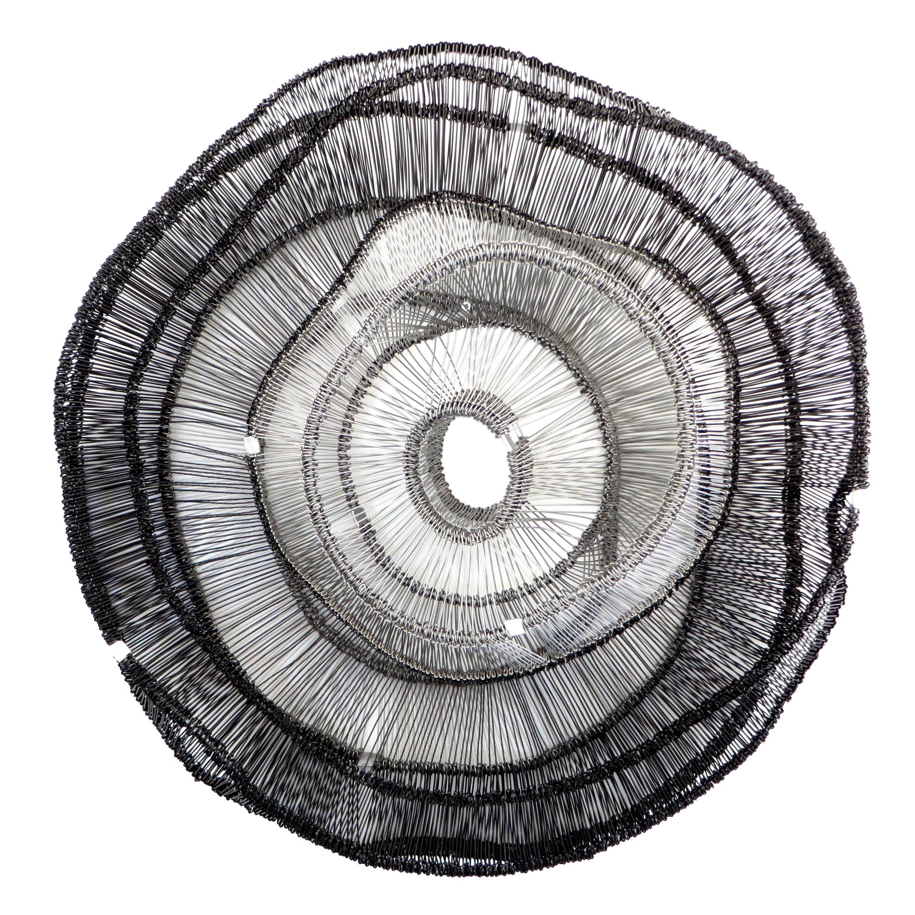 Artist Eric Gushee Emergence Series Woven Wire Wall Sculpture