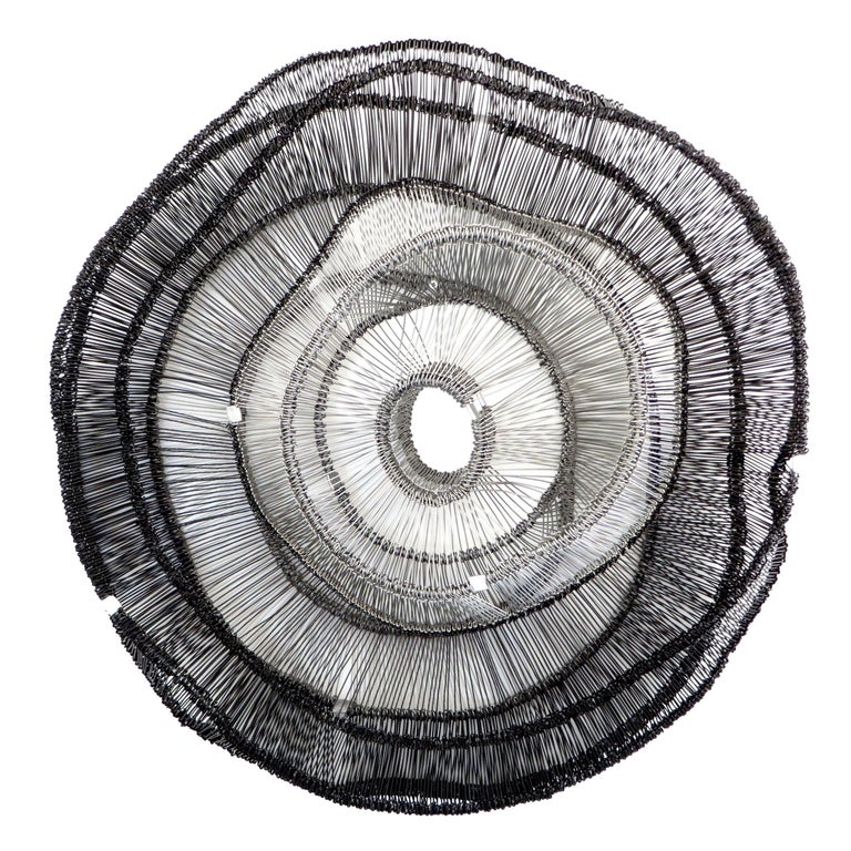 Artist Eric Gushee Emergence Series Woven Wire Wall Sculpture For Sale
