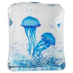 Artistic Handmade Aquarium Murano Glass by Roberto Beltrami