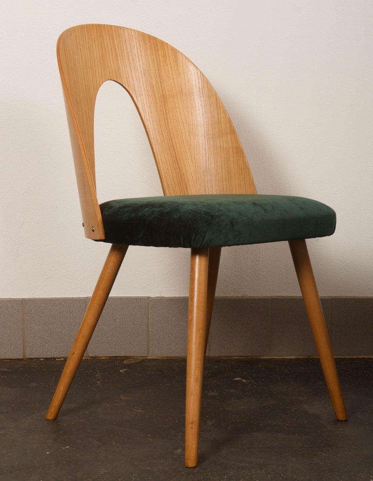 Ash Dining Chairs by Antonin Suman for Tatra In Excellent Condition In Vienna, AT