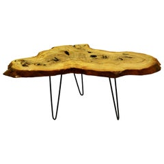 Ash Tree Live Edge Coffee Table with Hairpin Legs / LECT106