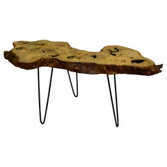 Ash Tree Live Edge Coffee Table with Hairpin Legs / LECT127