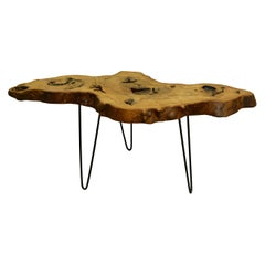 Ash Tree Live Edge Coffee Table with Hairpin Legs / LECT131