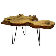 Ash Tree Live Edge Coffee Table with Hairpin Legs / LECT132