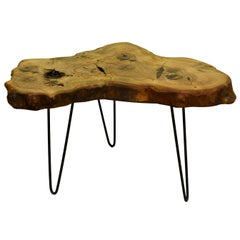 Ash Tree Live Edge Coffee Table with Hairpin Legs / LECT133