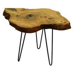 Ash Tree Live Edge Coffee Table with Hairpin Legs / LECT141