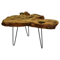 Ash Tree Live Edge Coffee Table with Hairpin Legs / LECT154