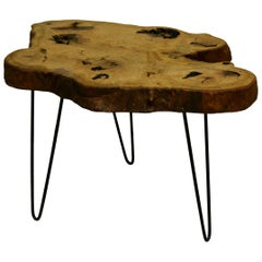 Ash Tree Live Edge Coffee Table with Hairpin Legs / LECT158