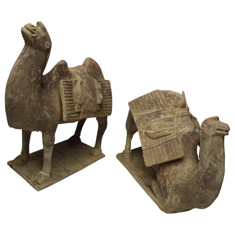 Asian Chinese Art Antique Bactrian Camels circa 15th Century Ex Christie's HK For Sale