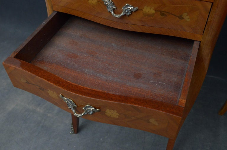 Attractive Pair of Bedside Cabinets For Sale 2