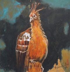 Hoatzin Bird 1976 - Expressionist animal art bird portrait oil painting
