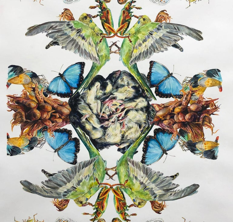Augustina Droze is an artist based in Beijing, China.  This painting is from a new series of watercolor paintings begun by the artist during the quarantine.  his series of watercolor artworks depicts animal and insect specimens in ornate brocade