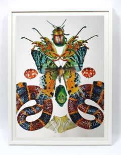 Contemporary Photorealist Painting Snake Butterfly Animal Colorful Beetles frame