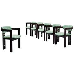Augusto Savini 6 Pamplona Chairs Pozzi, Italy, 1965