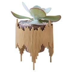 Aurea Plant Stand 2 by Sofia Alvarado
