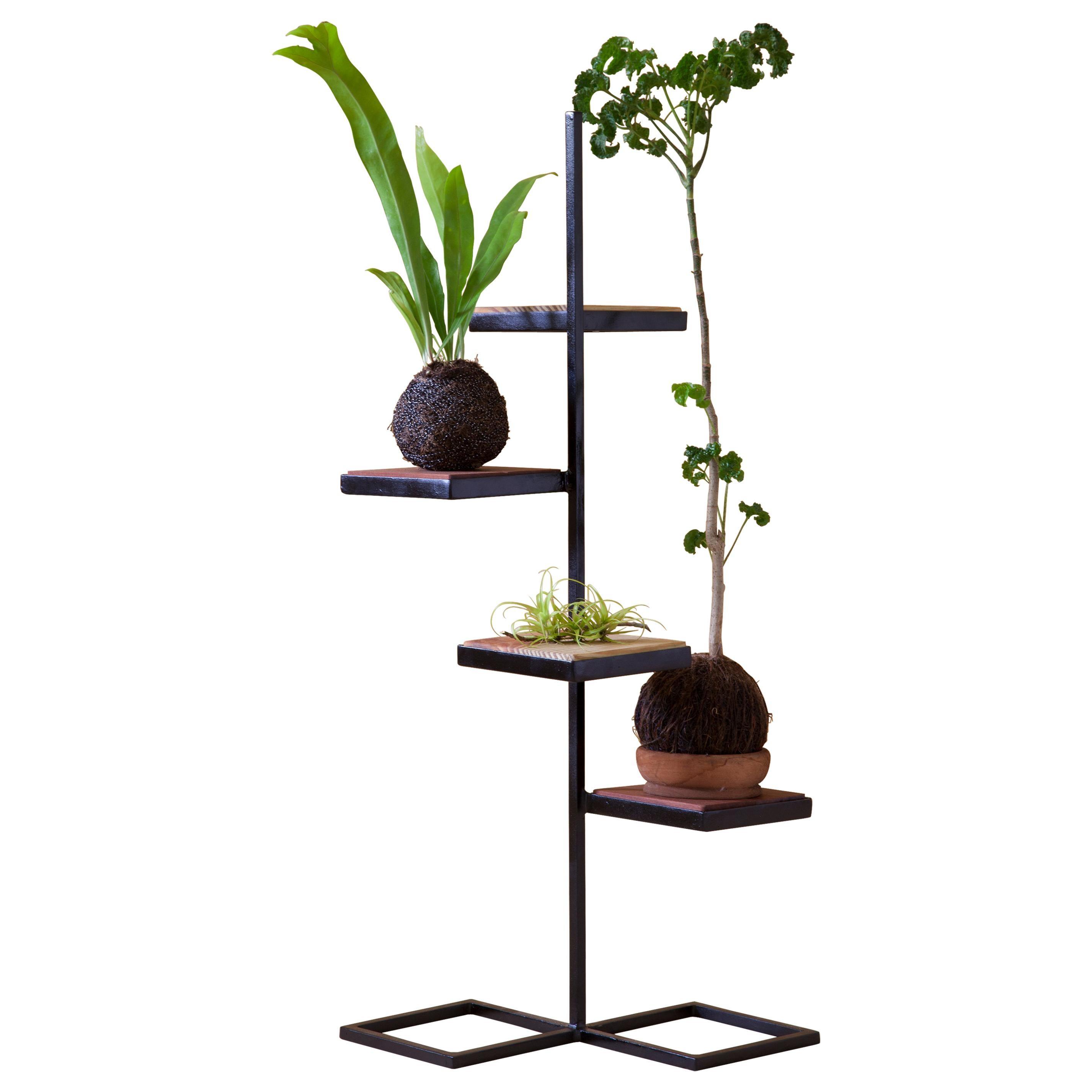Aurea Plant Stand 3 by Sofia Alvarado
