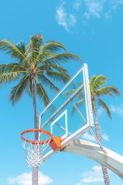 Palm Hoops 2
