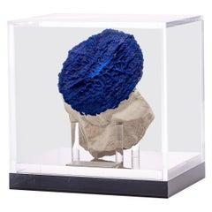 Australian Blue Azurite Sun Specimen in Acrylic Custom Box