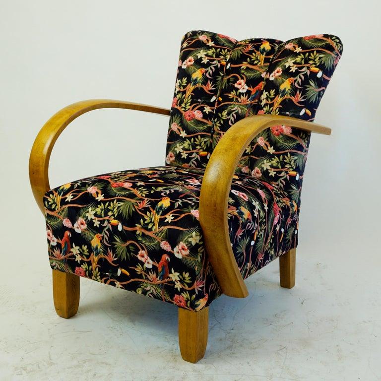 Austrian Art Deco Beechwood Armchair with Black Floral ...