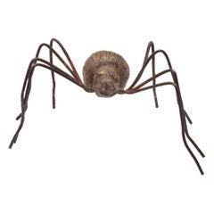 Austrian Bronze Spider