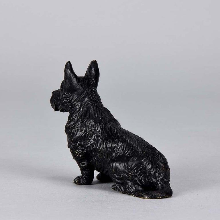 Austrian Cold Painted Bronze 'Seated Terrier' by Franz Bergman In Excellent Condition For Sale In London, GB