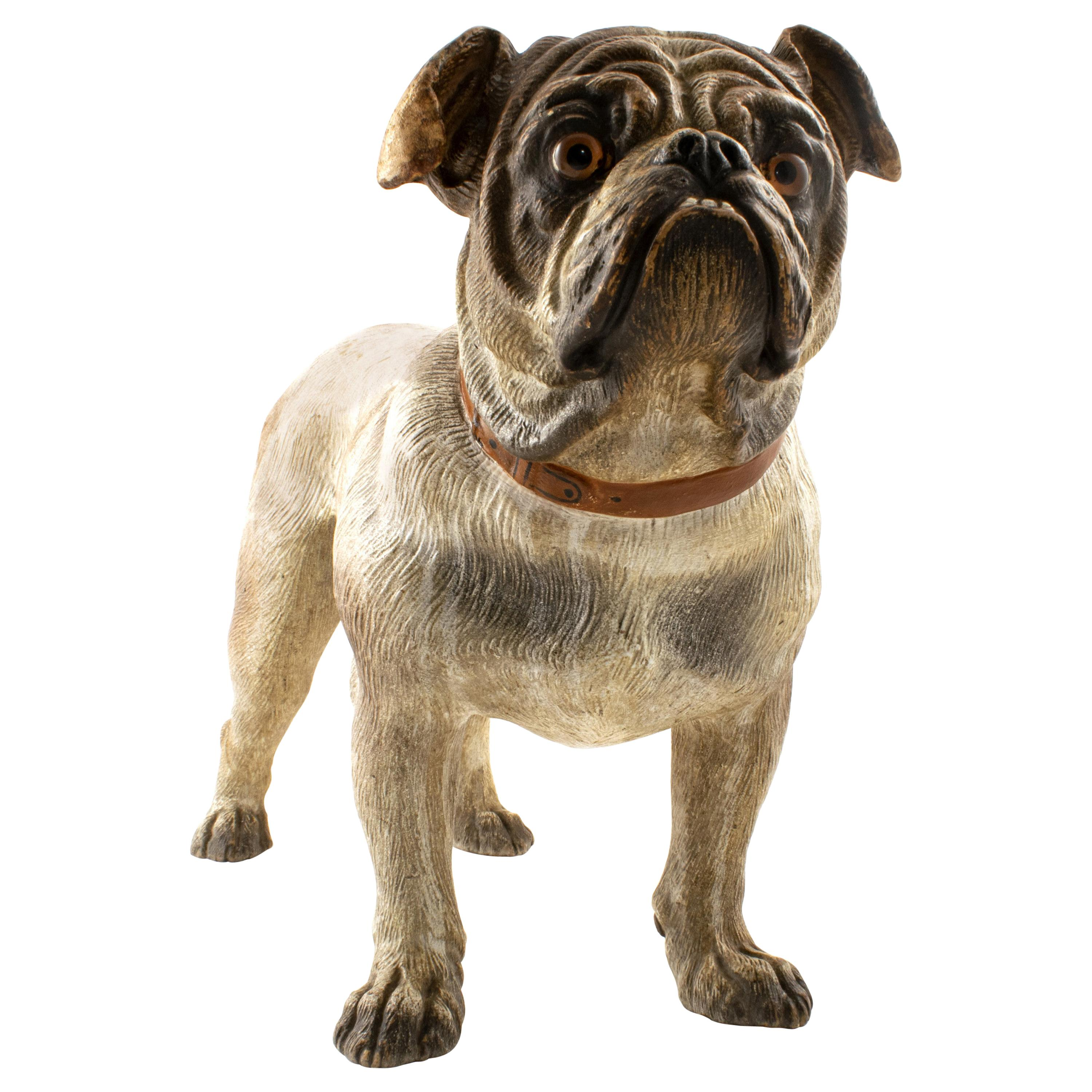 Austrian Cold Painted Terracotta Model of a Bulldog