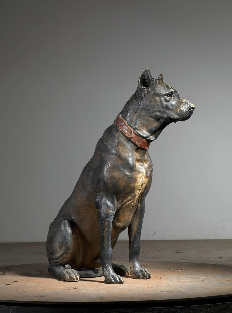 Other Austrian Cold Painted Terracotta Model of a Seated Dog, Early 20th Century For Sale