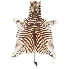 Authentic African Zebra Hide Carpet Rug