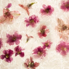 Fleurice M6