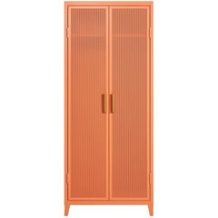 B2 Perforated Locker Wardrobe in Flamingo Pink by Chantal Andriot and Tolix