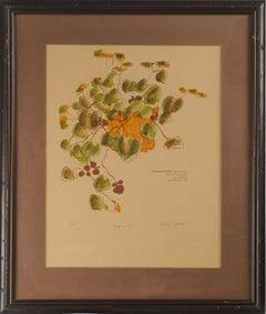 """Creeping Charlie"" Botanical Watercolor"