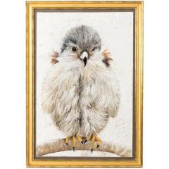 Baby Bird Pastel by Marianne Stikas