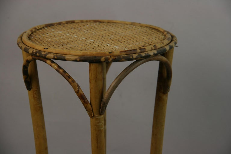 8-145 bamboo and rattan plant stand. Measure: Top diameter 8
