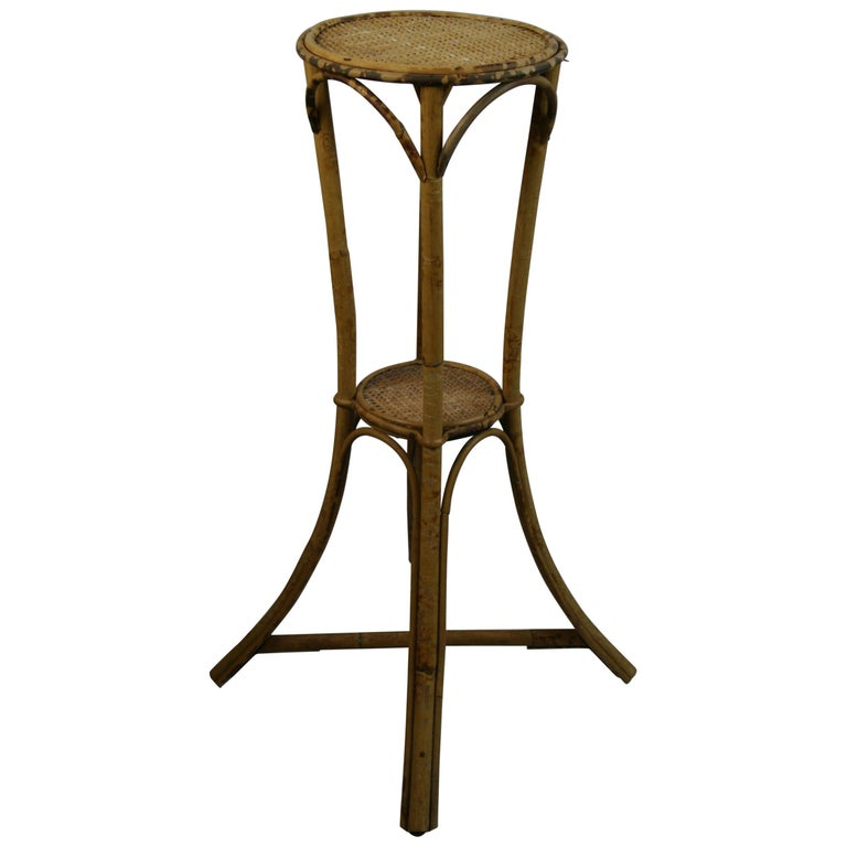Bamboo and Rattan Plant Stand /Pedestal For Sale
