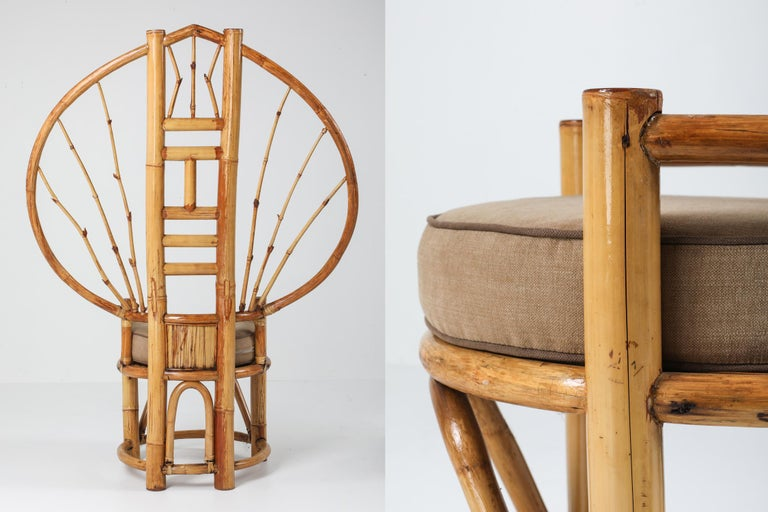 Bamboo Peacock Chairs in the Style of Albini 6