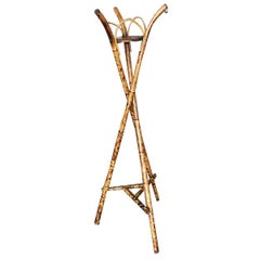 Restored Tiger Bamboo Tripod Plant Stand
