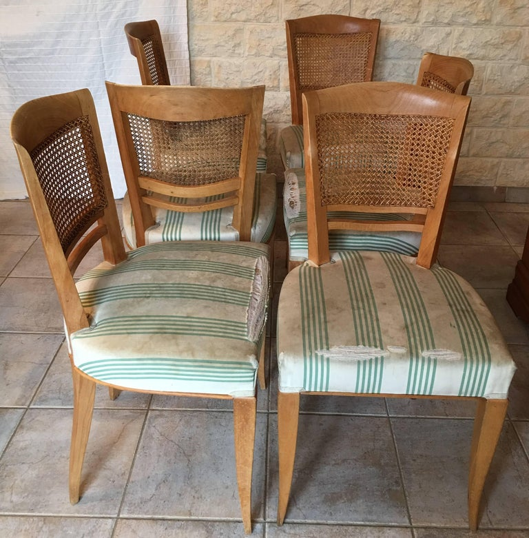 Rare set of six caned back chairs designed by Baptistin Spade in 1950s Documented, this model also exists in lacquered white wood. Ideal for DIY enthusiasts or dealers, I propose a low price because the set is in original condition and will have to