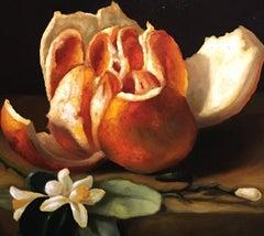 Sliced Orange, Still-life, Italian artist, Florence, Realism, Oil Painting.
