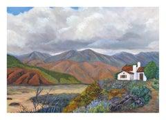 Desert Home Landscape