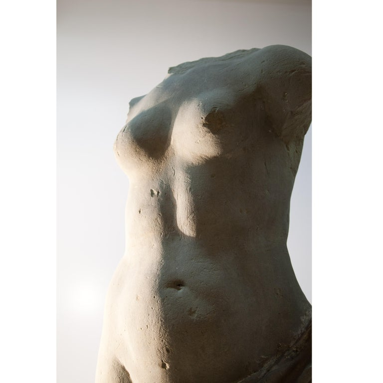 Baroque Sandstone Torso, Franconia / Germany 18th Century For Sale 5