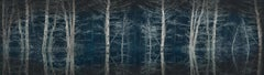 Blue Forest by Barry Cawston. Panoramic photograph with acrylic face mount