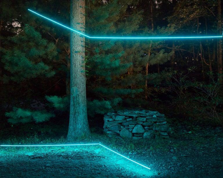 Barry Underwood Landscape Photograph - Landscape, Trees, Nature, Light, Blue, Installation