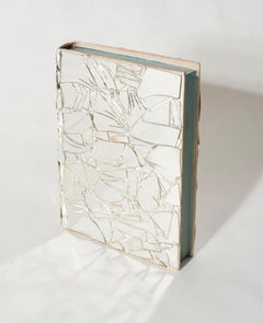 Untitled (Shattered Mirror on Book)