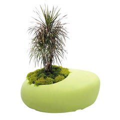 BDLove Planter by Ross Lovegrove for BD Barcelona