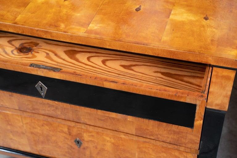 Ebony Beautiful 19th Century Biedermeier Commode For Sale