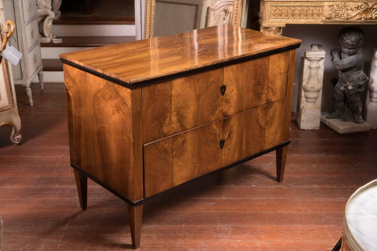 Stunning honey colored maple and ebony commode. Early 19th century Northern European simple and chic two-drawer commode.